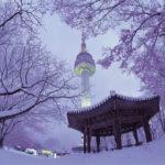 Рейс Иркутск Сеул на новогодние праздники